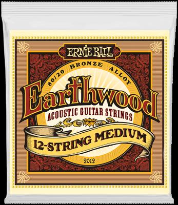 Ernie Ball EB2012 12-String
